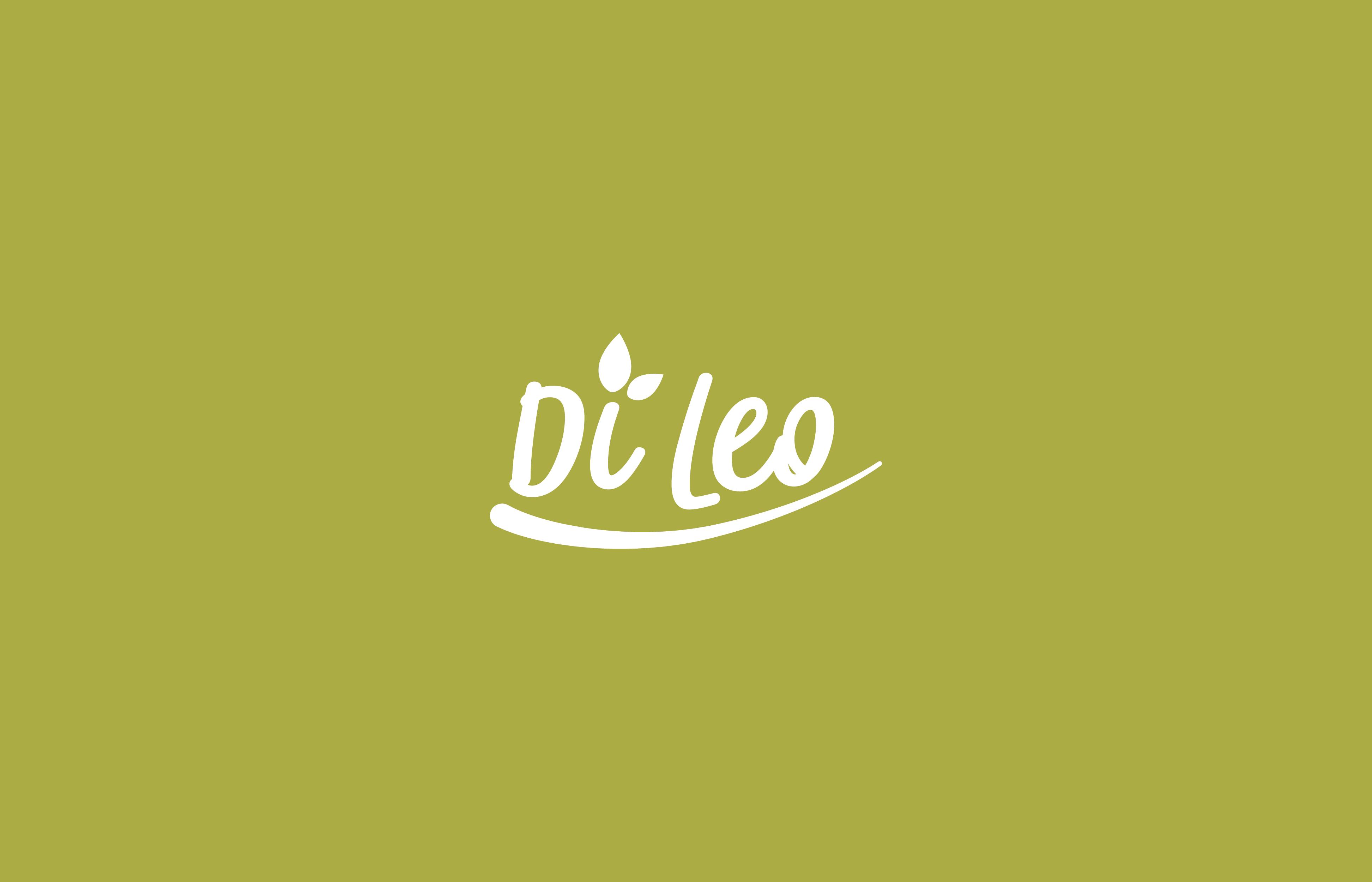 DILEO-04